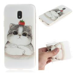 Cute Tomato Cat IMD Soft TPU Cell Phone Back Cover for Samsung Galaxy J3 2017 J330 Eurasian
