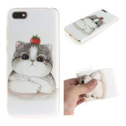 Cute Tomato Cat IMD Soft TPU Cell Phone Back Cover for Huawei Y5 Prime 2018 (Y5 2018)