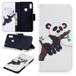 Tree Panda Leather Wallet Case for Huawei Y6 (2019)