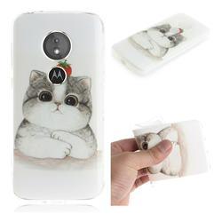 Cute Tomato Cat IMD Soft TPU Cell Phone Back Cover for Motorola Moto E5