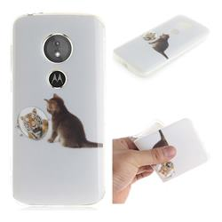 Cat and Tiger IMD Soft TPU Cell Phone Back Cover for Motorola Moto E5