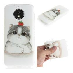 Cute Tomato Cat IMD Soft TPU Cell Phone Back Cover for Motorola Moto G5S