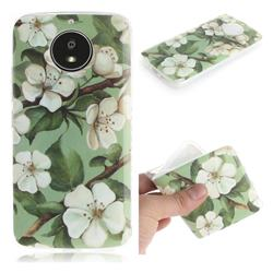 Watercolor Flower IMD Soft TPU Cell Phone Back Cover for Motorola Moto G5S