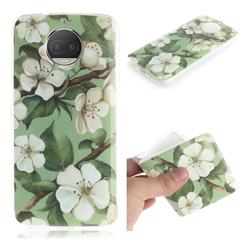 Watercolor Flower IMD Soft TPU Cell Phone Back Cover for Motorola Moto G5S Plus