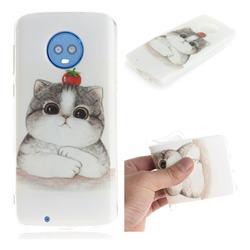 Cute Tomato Cat IMD Soft TPU Cell Phone Back Cover for Motorola Moto G6