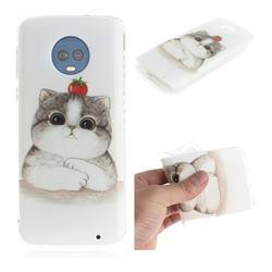 Cute Tomato Cat IMD Soft TPU Cell Phone Back Cover for Motorola Moto G6 Plus G6Plus