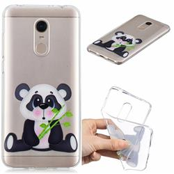 Bamboo Panda Clear Varnish Soft Phone Back Cover for Mi Xiaomi Redmi 5 Plus