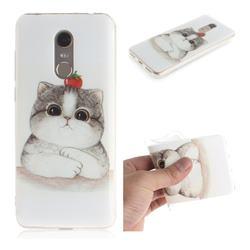 Cute Tomato Cat IMD Soft TPU Cell Phone Back Cover for Mi Xiaomi Redmi 5 Plus
