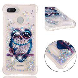 Sweet Gray Owl Dynamic Liquid Glitter Sand Quicksand Star TPU Case for Mi Xiaomi Redmi 6