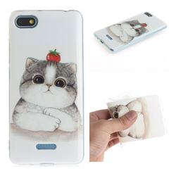 Cute Tomato Cat IMD Soft TPU Cell Phone Back Cover for Mi Xiaomi Redmi 6A