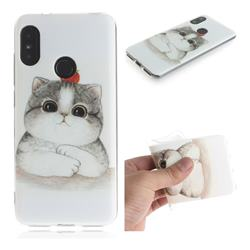 Cute Tomato Cat IMD Soft TPU Cell Phone Back Cover for Xiaomi Mi A2 Lite (Redmi 6 Pro)