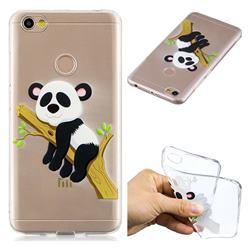 Tree Panda Super Clear Soft TPU Back Cover for Xiaomi Redmi Note 5A