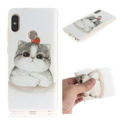 Cute Tomato Cat IMD Soft TPU Cell Phone Back Cover for Xiaomi Redmi Note 5 Pro