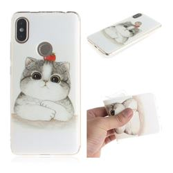 Cute Tomato Cat IMD Soft TPU Cell Phone Back Cover for Mi Xiaomi Redmi S2 (Redmi Y2)