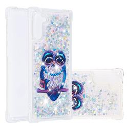 Sweet Gray Owl Dynamic Liquid Glitter Sand Quicksand Star TPU Case for Samsung Galaxy Note 10 (6.28 inch) / Note10 5G