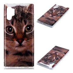 Garfield Cat Soft TPU Cell Phone Back Cover for Samsung Galaxy Note 10+ (6.75 inch) / Note10 Plus