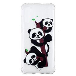 Three Pandas Anti-fall Clear Varnish Soft TPU Back Cover for Huawei nova 4
