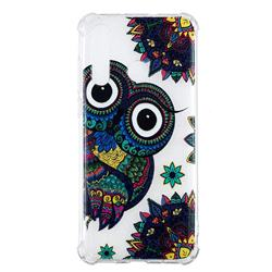 Owl Totem Anti-fall Clear Varnish Soft TPU Back Cover for Huawei nova 4