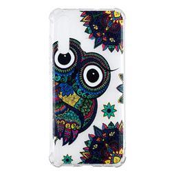 Owl Totem Anti-fall Clear Varnish Soft TPU Back Cover for Huawei nova 4