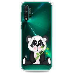 Bamboo Panda Clear Varnish Soft Phone Back Cover for Huawei Nova 5 / Nova 5 Pro