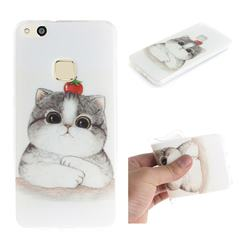 Cute Tomato Cat IMD Soft TPU Cell Phone Back Cover for Huawei P10 Lite P10Lite