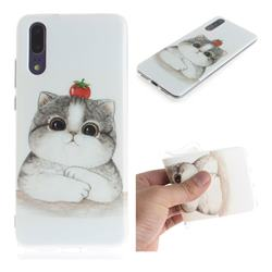 Cute Tomato Cat IMD Soft TPU Cell Phone Back Cover for Huawei P20