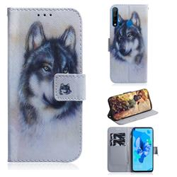 Snow Wolf PU Leather Wallet Case for Huawei P20 Lite(2019)
