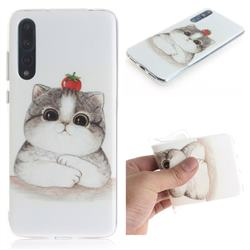 Cute Tomato Cat IMD Soft TPU Cell Phone Back Cover for Huawei P20 Pro