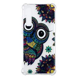 Owl Totem Anti-fall Clear Varnish Soft TPU Back Cover for Huawei P30