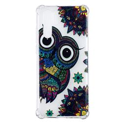 Owl Totem Anti-fall Clear Varnish Soft TPU Back Cover for Huawei P30 Pro