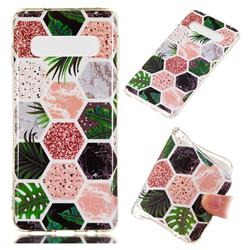 Rainforest Soft TPU Marble Pattern Phone Case for Samsung Galaxy S10 (6.1 inch)