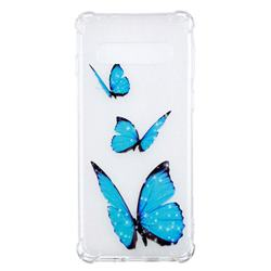 Blue butterfly Anti-fall Clear Varnish Soft TPU Back Cover for Samsung Galaxy S10 (6.1 inch)