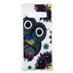 Owl Totem Anti-fall Clear Varnish Soft TPU Back Cover for Samsung Galaxy S10 (6.1 inch)
