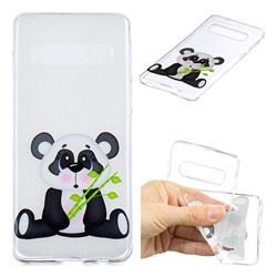 Bamboo Panda Clear Varnish Soft Phone Back Cover for Samsung Galaxy S10 (6.1 inch)