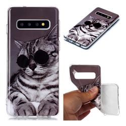 Kitten with Sunglasses Soft TPU Cell Phone Back Cover for Samsung Galaxy S10 (6.1 inch)