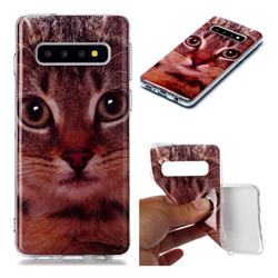 Garfield Cat Soft TPU Cell Phone Back Cover for Samsung Galaxy S10 (6.1 inch)