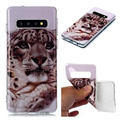 White Leopard Soft TPU Cell Phone Back Cover for Samsung Galaxy S10 (6.1 inch)