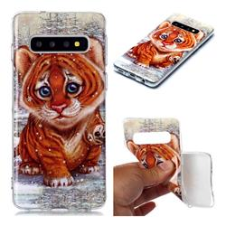 Cute Tiger Baby Soft TPU Cell Phone Back Cover for Samsung Galaxy S10 (6.1 inch)