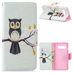 Owl on Tree Leather Wallet Case for Samsung Galaxy S10 (6.1 inch)