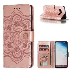 Intricate Embossing Datura Solar Leather Wallet Case for Samsung Galaxy S10 (6.1 inch) - Rose Gold