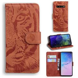 Intricate Embossing Tiger Face Leather Wallet Case for Samsung Galaxy S10 (6.1 inch) - Brown