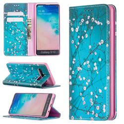 Plum Blossom Slim Magnetic Attraction Wallet Flip Cover for Samsung Galaxy S10 (6.1 inch)