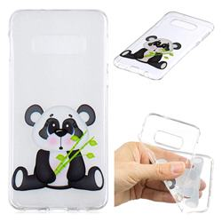 Bamboo Panda Clear Varnish Soft Phone Back Cover for Samsung Galaxy S10e (5.8 inch)