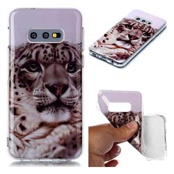 White Leopard Soft TPU Cell Phone Back Cover for Samsung Galaxy S10e (5.8 inch)