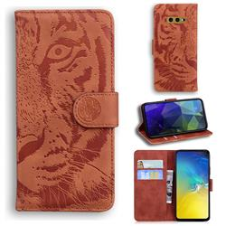 Intricate Embossing Tiger Face Leather Wallet Case for Samsung Galaxy S10e (5.8 inch) - Brown