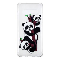 Three Pandas Anti-fall Clear Varnish Soft TPU Back Cover for Samsung Galaxy S10 Plus(6.4 inch)