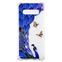 Peacock Butterfly Anti-fall Clear Varnish Soft TPU Back Cover for Samsung Galaxy S10 Plus(6.4 inch)