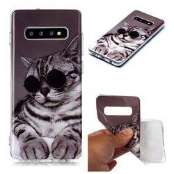 Kitten with Sunglasses Soft TPU Cell Phone Back Cover for Samsung Galaxy S10 Plus(6.4 inch)