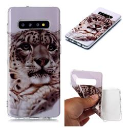 White Leopard Soft TPU Cell Phone Back Cover for Samsung Galaxy S10 Plus(6.4 inch)
