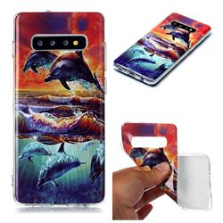 Flying Dolphin Soft TPU Cell Phone Back Cover for Samsung Galaxy S10 Plus(6.4 inch)
